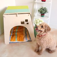 pet-house_4_madona-lilis_Green_2