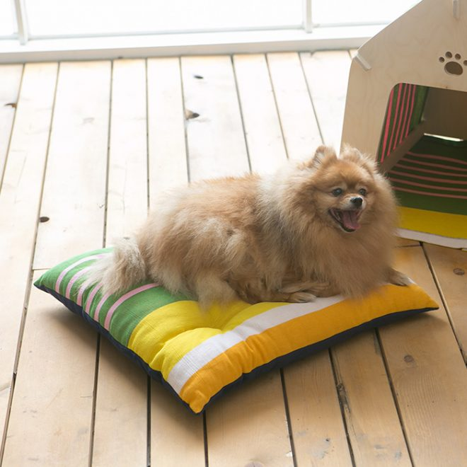 pet-cushion_BA_sunshingold