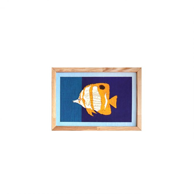 fish-butterflyfish-8